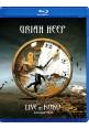 """Blu-ray фильм (блюрей диск) Uriah Heep """"Live in Koko"""""""